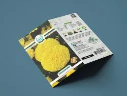 Natural Marigold Seeds, For Agriculture, Packaging Type: Packet