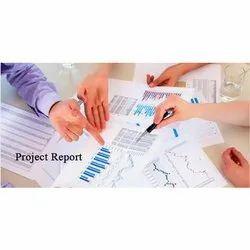 Online Industrial Project Report Service, Pan India