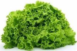 A Grade Lettuce Green, 5 Kg
