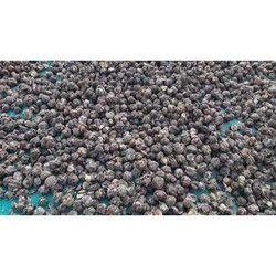 Dried Amla Whole Seed, Packaging Size: 1 Kg, Packaging Type: Pp Bag