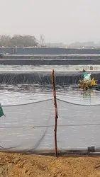 Fisheries/Aquaculture Sheets