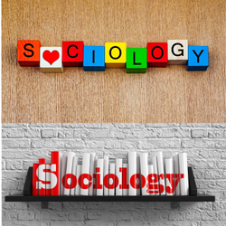 Sociology Dissertation Writing