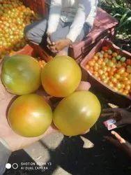 A Grade Pan India Tomato, Carton, 5 Kg
