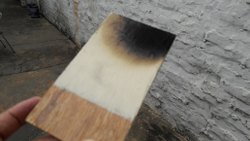Fire Retardant Wood Coating