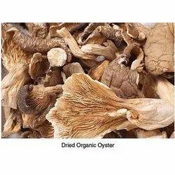 A Grade Dry Oyster Mushroom, PP Bag, Packaging Size: 5 Kg