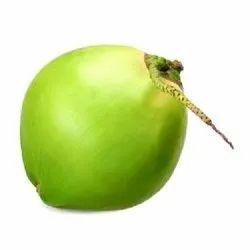 A Grade Tender Coconut