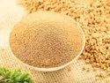 Methi Powder / Fenufreek Powder
