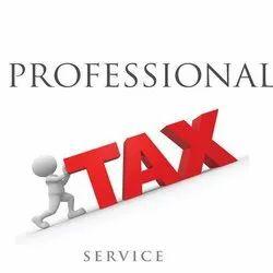 Service Tax Consultancy Service