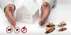 Cockroaches Pest Control Services