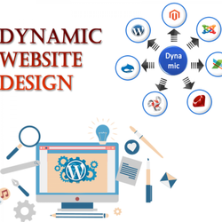Dynamic Website Designing Service, With 24*7 Support