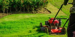 Natural Lawn Maintenance Services, Ahmedabad, Coverage Area: <1000 Square Feet