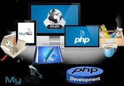 Portfolio Website PHP Development Service, Sparrow Software