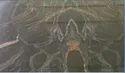 Black Albena Granite