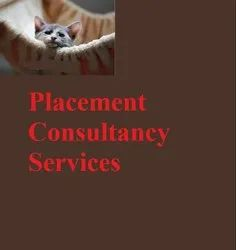 10 Am To 5 Pm Offline & Online Placement Consultancy Services, 15 Years