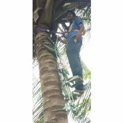 Coconut Tree Climber Machine With Safety Belt