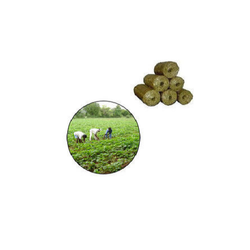 Bio Briquettes for Agriculture
