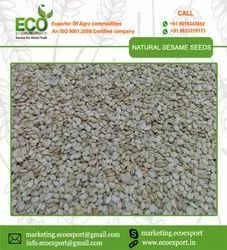 White Natural Sesame Seeds Export Quality