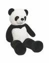 Panda Standing 5F