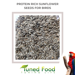 Sunflower Seeds With Skin - Bird Food Seeds - Protein Rich Quality Seeds