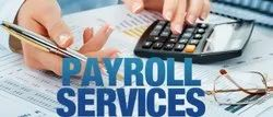 9:30 To 18:00 Pay Roll Out Sources, Gurugram,Haryana