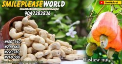 Everest Garlic W320 Cashew Nut, Packaging Size: 50 g, Packaging Type: Packets