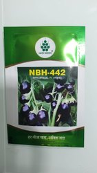 Nath Nbh-442 Brinjal Seeds