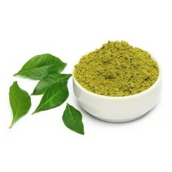 Curry Leaf Powder, Packaging Type: PP Woven Bag
