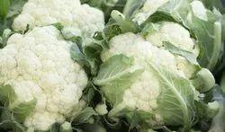 A Grade Organic Fresh Cauliflower