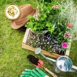 Parks Or Gardening Low Maintenance Landscaping Services, On Site