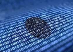 1 Cyber Forensic Services, IT Industry