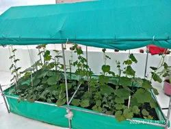 Agriculture vegitable plant Kitchen Garden, For Vegetable Production, Coverage Area: 32 sq. Feet