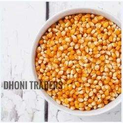 Yellow Raw Maize, High in Protein