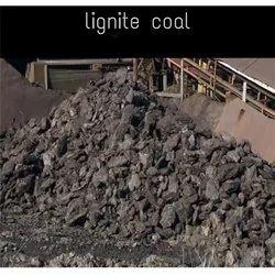Barmer Lignite Coal