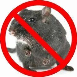 Offline Spray Rodent Pest Control Service, Rajasthan