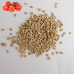 Dried Organic Tomato Seeds, Packaging Type: PP Bag, Packaging Size: 1 Kg