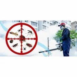 Office Fumigation Services