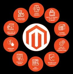 PHP/JavaScript Dynamic Magento Development Service, With 24*7 Support