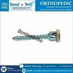 Orthopedic Double Lock Mono Axial Screw