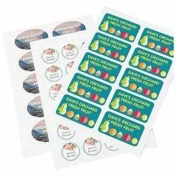 Paper Custom Stickers Printing Services, in Ahmedabad
