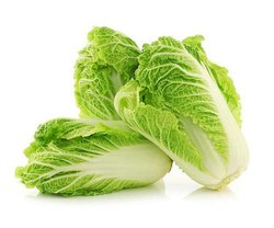 A Grade Green Chinese Cabbage, Carton, 10 Kg