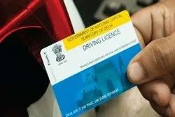 Individual Consultant Driving License Service