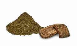 Herbal Medicine for Piles, For Personal, Packaging Type: Tin