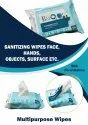 GYM cleaning Facial, Hand Sanitizing Cleansing Cleaning Wet Wipes - 25pulls Pack - Bkc Formulation