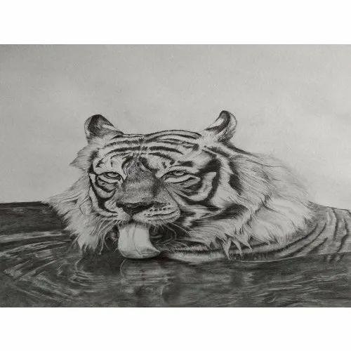 Tiger Charcoal Portrait Painting