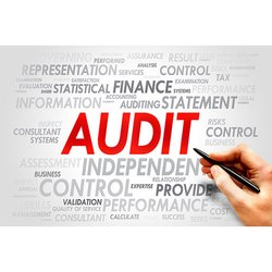 Individual Consultant One-Time Audit Assignment Service