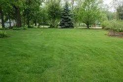 Garden & Lawn Management