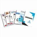 Multicolor Paper Corporate Catalogue Printing Services, Location: Delhi Ncr, Size: A4