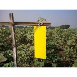 12 x 8 Inch Yellow Sticky Trap