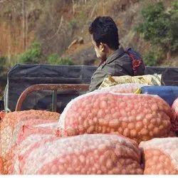 Fruits & Vegetables Transportation Services