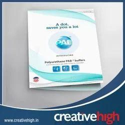 2 Days Brochure Designing Services